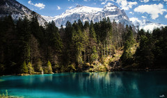 The Blue Lake, Switzerland (VandenBerge Photography (this week mostly absent)) Tags: blausee kantonbern kandersteg fantasticnature forest green blue sky mountains nature landscape waterscape water lake