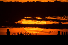 We are always moving away from the Sun. (Owen Llewellyn) Tags: owenllewellyn cygnusimaging canon lambeth brixton brixtonhill eos1dx eos 1dx colour color sun solar sol sunset orange moody radiation stars stellar atmosphere chimney pots city urban spring warm bright