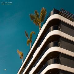 [ #108 :: 2017 ] (Salva Mira) Tags: palmeres palmeras palmtrees terrats tejados roofs cel cielo sky blau blue benidorm marinabaixa lamarina paísvalencià salvamira salva salvadormira