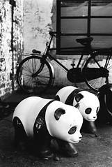 馬祖新村_17 (Taiwan's Riccardo) Tags: 2016 taiwan bw 135film negative plustek8200i kodakdoublex5222 slr contax137md zeisslens planar fixed 50mmf17 cymount 桃園縣 馬祖新村 中壢 龍岡