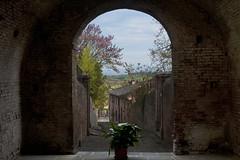Arriva Pasqua a Lucignano d'Arbia - Easter comes in Lucignano d'Arbia (ricsen) Tags: italia italy toscana tuscany lucignano arbia monteronidarbia siena cretesenesi sieneseclays borgo village
