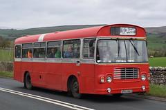 AFB586V  455  Bristol (highlandreiver) Tags: kirkbystephen afb586v afb 586v 455 bristol ecw buses bus coach cumbria