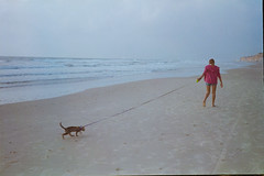 CatWalk (MY ANALOG DIARY // by Shay Segev) Tags: 35mm cat walk analog shay segev sea shore candid ocean story
