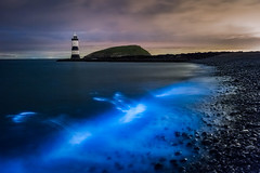 Bioluminescents the return!!! (evorichie101) Tags: bioluminescent algae plankton natural nature light glow phenomenon nikon landscape seascape penmon anglesey wales sea beach dark night