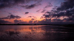 Inside the Sun (Keith Midson) Tags: birds bridport birdport sunrise trentwater bridriver river sun clouds morning reflection water shoreline shore bird flight flying flock