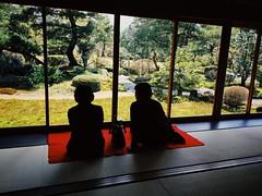 Japanese Garden (Costa Rica Bill) Tags: silhouettes garden japan iphone vsco