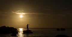 Fisher at work (Metalbrother) Tags: philippholler wallis aargau switzerland schweiz world photography camera nikon d750 d3200 tamron nikkor 1530 2470 150600 creativecommons landscape animal bird exposure trend path day night lens nature color sea beach