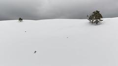 V (Nicolas Gailland) Tags: landscape nature paysage montagne mountain hiver winter neige snow white tree trees arbre arbres pasduserpaton gresseenvercors montaiguille grandveymont vercors alpes alps alpe isere isère grenoble canon france hitech filter filtre gnd nd mark