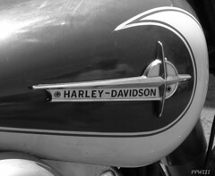 Harley-Davidson Electra Glide (PPWIII) Tags: bike start kick scooter lodge harley cycle motorcycle grandrapids birch davidson electra kicker glide