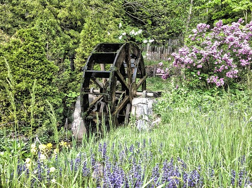Powder Mills water wheel