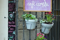 Caf Camelia (Is that place) Tags: barcelona amigos bar cafe camelia guide veggie comer gracia verdi guia beber tranquilo merienda mammaproof isthatplace
