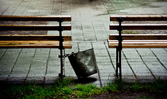 Bucket Between the Benches (Orbmiser) Tags: park rain oregon portland spring nikon sidewalk raindrops benches pail d90 55200vr