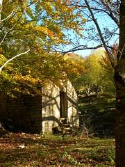 Parco Antola_006_Casolare_10-12 (mi.da_me) Tags: antola parco liguria autunno alberi foglie contadini rurale bosco rosso mountainsnaps appennino casolare campagna pietre porta faggi