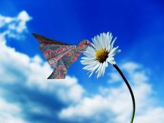 Humming bird - Kunihiko Kasahara (Rui.Roda) Tags: bird origami flor pássaro pajaro papiroflexia oiseau humming colibri beija