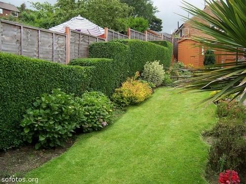 Paisagismo e jardinagem 28