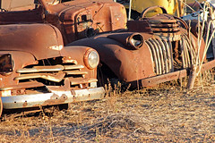 Memories (aussiegypsy_Land of Tables, FNQ) Tags: old history abandoned truck vintage rust transport memories australian rusty australia vehicles international chevy rusted qld outback remote derelict croydon memorabilia chev bygone