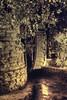 Old mill (Sanya Petrov) Tags: old mill nature water night bulgaria balchik