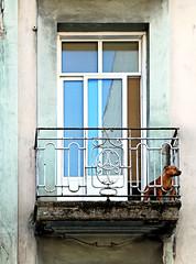 security post (Sigrid Klop) Tags: door españa dog window animal fauna architecture facade ventana spain puerta nikon balcony balkon fenster hond perro sigrid frontal fachada vigo architectuur raam spanje encanto deur architectura gevel pittoresk pittoresque d80 finistre sigridklop