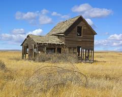 Abandoned Homestead (wplynn) Tags: house abandoned home washington farm homestead eastern yakima dilapitated