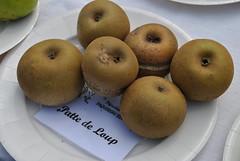 La Haye-Fouassire, France (Tiphaine Rolland) Tags: france apple nikon pommes apples 1855mm 1855 pomme paysdeloire d3000 lahayefouassire nikond3000