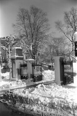 020869 20 (ndpa / s. lundeen, archivist) Tags: park street trees winter people blackandwhite bw snow storm 1969 film monochrome boston corner 35mm ma blackwhite gate path massachusetts nick snowstorm entrance pedestrians 1960s february common snowfall blizzard bostoncommon beaconhill beaconstreet snowbank winterstorm charlesstreet dewolf heavysnow bigsnow coveredinsnow recordsnowfall recordsnow nickdewolf photographbynickdewolf