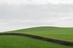 Empty landscapes (Ron Mooij) Tags: uk greatbritain england grass landscape groen gras engeland landschap heg heuvel emptylandscapes legelandschappen