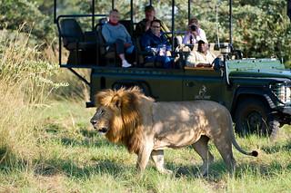 Botswana Okavango Delta Photo Safari 51