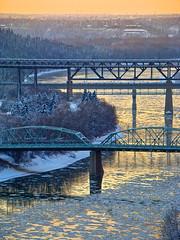 slow golden freeze (skylinejunkie) Tags: blue trees winter snow canada ice gold edmonton seasons bridges freezing alberta rivervalley northsaskatchewanriver