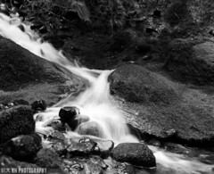 Kaymar Moving Water III (Kevin Harding) Tags: water moving hc110 m plus ravine homebrew ilford panf kaymar rb67 dilution filmisnotdead 500px analoguelove ifttt