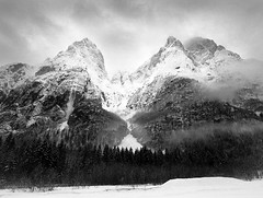 Valle di San Lucano (Black and White Analog Landscape Photography) Tags: italy mountains mamiya film nature montagne landscape scenery italia natura analogue wilderness paesaggio dolomiti mamiya7 valledisanlucano