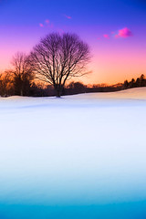 Winterscape (little~ny) Tags: blue trees winter light sunset sky orange sunlight white snow cold tree nature beautiful beauty field weather rural sunrise season landscape outdoors evening countryside frozen colorful pretty solitude frost quiet purple natural dusk snowy horizon country january scenic lavender peaceful nobody scene covered blizzard idyllic tranquil winterscape