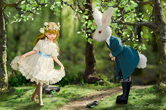 Enchante (Hurry Up Miss Jane) Tags: rabbit forest woodland person miniature midsummer handmade magic dream fairy nights tale enchantment licca diorama curtsy needlefelt azone vision:outdoor=0965 vision:plant=0898