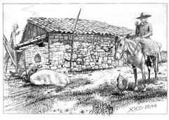 Viamão Bucólico