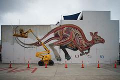 (th3butcherofbilbao) Tags: melbourne street art nychos