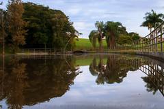 reflexo !!! (vlamiralvesbastos) Tags: reflexopaisagem reflection vlamiralvesbastos paisagem landscape naureza nature nuvens naturaleza