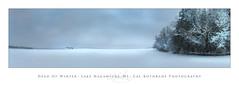 Frozen lake in Winter (calkothrade2) Tags: tundra frozenlake nagawicka winter ice wisconsin delafield