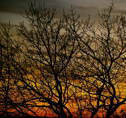 """Sunset • <a style=""""font-size:0.8em;"""" href=""""http://www.flickr.com/photos/52364684@N03/32826223734/"""" target=""""_blank"""">View on Flickr</a>"""