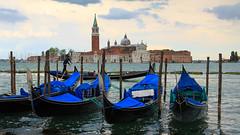Venice (Rodney Topor) Tags: italy venice grandcanal canal gondolas