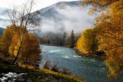 禾木河風光 Hemu River scenery (C. Alice) Tags: river xinjiang autumn water 2013 sony sky clouds sonynex5r nex5r sonyepz1650mmf3556oss green yellow 1000views aatvl01 aatvl02 2000views favorites100 favorites150 aatvl03 3000v120f 3000views