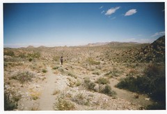 Joshua Tree National Park (kevinmarquezphoto) Tags: vuws vivitar ultra wide slim 35mm film san diego california nature outdoors hiking joshua tree national park desert landscape