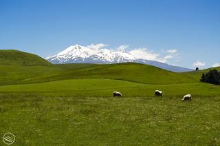 Mount Ruapehu (NZ)