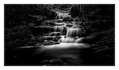 2820L The Middle Cascade (foxxyg2) Tags: water waterfalls cascades lumsdale lowerlumsdale derbyshire mono monochrome bw blackwhite niksoftware silverefex