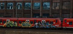 _DSC7694 (Under Color) Tags: hannover graffiti train db zug sbahn strain kunst art streetart subwayart
