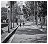 camera used: 1963 Kodak Instamatic 104 (Samy Collazo) Tags: kodakinstamatic1041963 ilfordfp4125plus lightroom3 niksilverefexpro2 bw bn sanjuan oldsanjuan viejosanjuan puertorico
