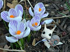Crocuses (air_dan) Tags: mushroom peddler snail bjd pet