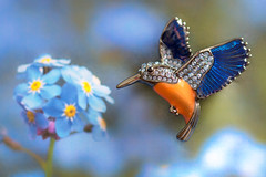 Macro Mondays - Orange and Blue (cuppyuppycake) Tags: orange blue macro mondays hmm macromondays macromonday hummigbird orangeblue flying brooch jewellery flower background sparkly closeup