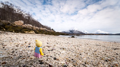 Aria on the Beach (Reiterlied) Tags: 1020mm angle beach butterfly cmf17 d500 dslr fjord girl lego legography lens minifig minifigure moss mountain nikon norway photography reiterlied sigma stuckinplastic toy uwa wide wings