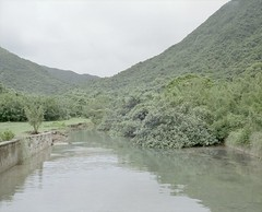 Chek Keng, Sai Kung (Egg Cheung) Tags: fujifilmgf670professional 6x7 fujicolorpro400h 120 film medium hongkong tree river chekkeng saikung