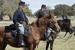 Fort Monroe Civil War encampment Virginia Hampton US cavalry union horses (watts_photos) Tags: fort monroe civil war encampment virginia hampton us cavalry union horses fortmonroe