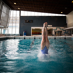 Brussels Open 2017, Belgium (monsieur I) Tags: 1stmay2017 brusselsopen brussels competition discover diving intheair monsieuri photography poseidon royalbrusselsposeidon sport sports swimmingpool water world